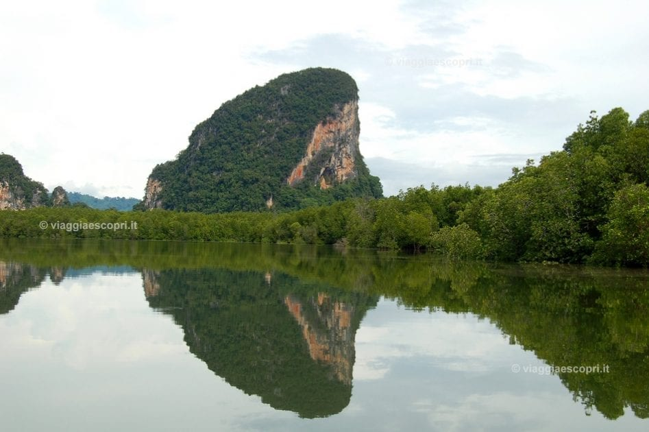 Riflessi nella foresta di mangrovie a Phang Nga Bay, escursione all'isola di James Bond