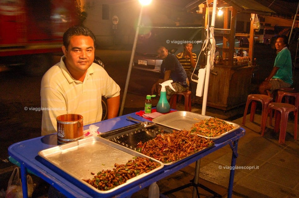 Vendita di insetti arrostiti in una bancarella al Night Market di Ayutthaya, street food in Thailandia