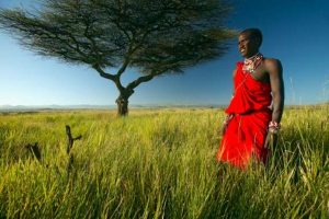 Safari, un guerriero Masai