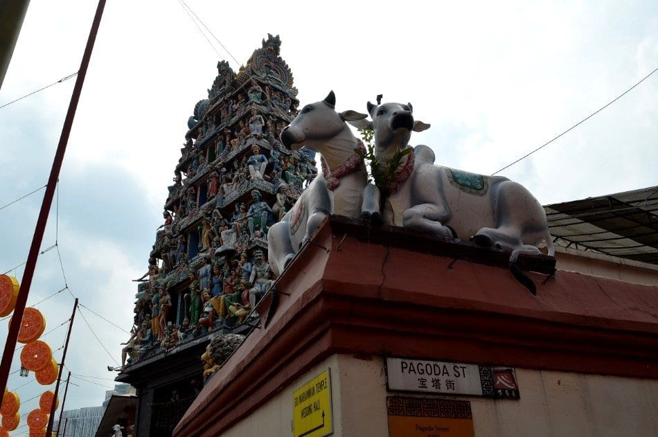 Visitare Singapore, Tempio Indù a Little India