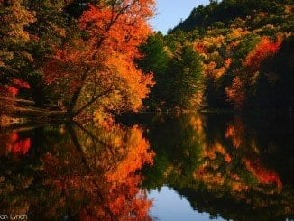 Foliage nel New England, photo credits by Brendan T Lynch on Flickr
