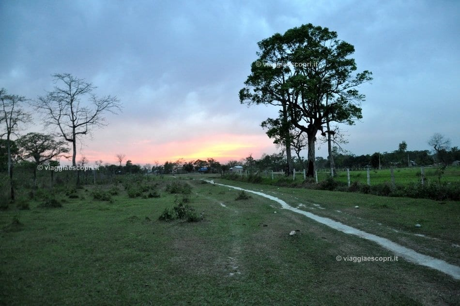 Tramonto nel Chitwan National Park
