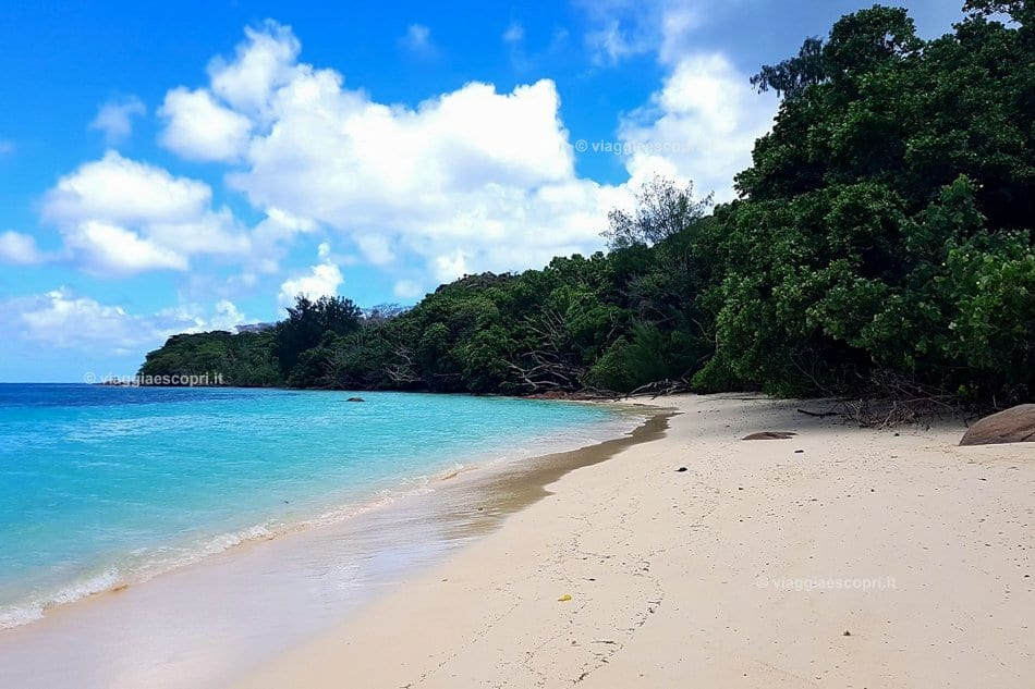 Spiagge candide a Curieuse, vacanza alle Seychelles